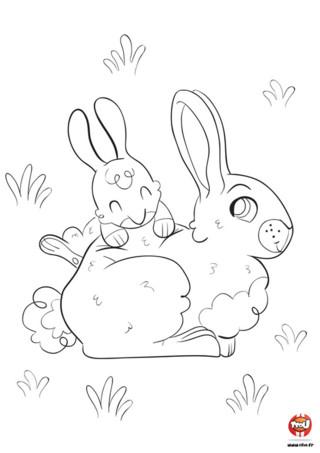 Ce petit lapin est très gourmand. Dès qu'arrive Pâques, il a très envie de manger du chocolat. Mais qu'a-t-il trouvé dans son jardin ? Un gros lapin en chocolat ! Prends vite tes crayons de couleurs pour colorier ce coloriage de lapin. Tu trouveras également plein de jolis coloriages de lapin à imprimer et colorier gratuitement. Laisse parler ta créativité !