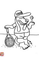 Chien tennisman