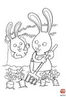 Le lapin dans son potager