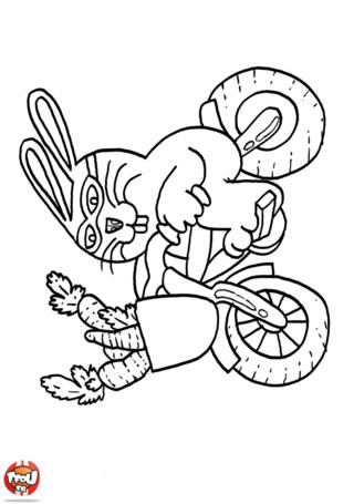 Coloriage: Lapin sur son vélo