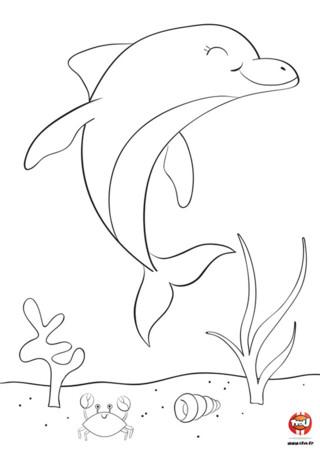Qu'il est mignon ce dauphin qui fait un grand sourire. Tu sais pourquoi il sourit ? Parce qu'il sait que tu vas le colorier avec de magnifique couleurs. N'attends plus ! Va sur TFou.fr et imprime ce joli coloriage gratuit pour enfant. Tu pourras colorier ce magnifique dauphin ainsi que son ami le crabe. Si tu aimes ces coloriages, tu peux retrouver d'autres coloriages de dauphins sur notre site TFou.fr