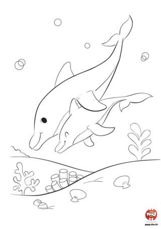 Hooo une maman dauphin et son bébé, ils sont tellement mignons. La maman nage avec son bébé en le tenant dans ses nageoires, elle append à son enfant à nager. Tu ne trouves pas qu'ils sont trop beaux ? Va sur Tfou.fr et imprime ce magnifique coloriage gratuit pour enfant et ajoute-y de jolies couleurs. Ils seront encore plus beaux grâce à toi. N'attends pas et sort tes plus beaux crayons ou feutres de couleurs !