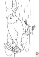 L'oiseau marche