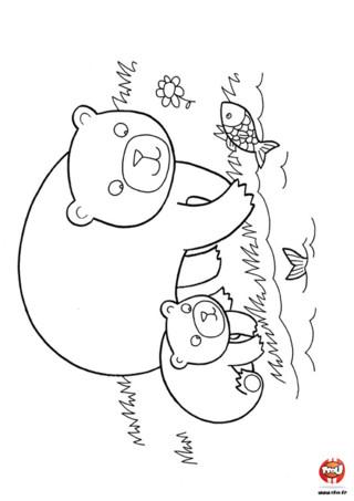 Coloriage : Ours brun apprend à pêcher. Papa ours apprend à son ourson comment pêcher. Imprime vite cet adorable coloriage et ajoute les couleurs de ton choix.
