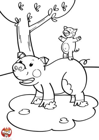 Coloriage: Papa cochon et bébé cochon