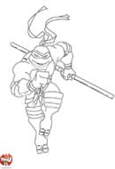 Tortue Ninja court