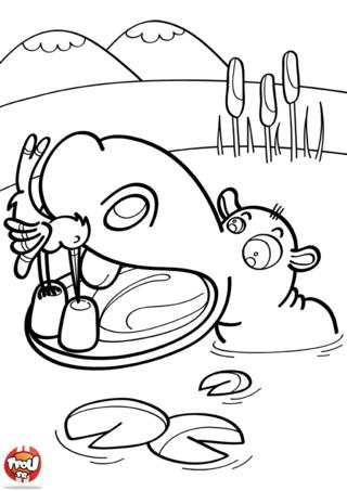 Coloriage: Hippopotame et oiseau