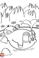 Hippo joue dans l'eau