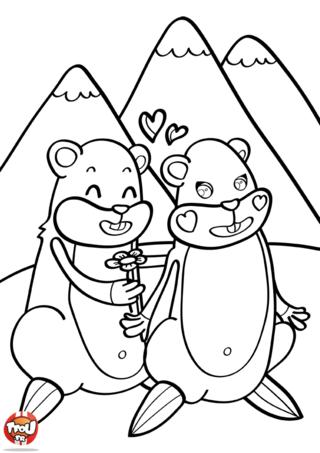 Coloriage: Déclaration de marmotte