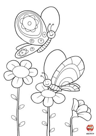 Coloriage : Les papillons et les fleurs. Imprime vite ce jolie coloriage de deux magnifiques papillons. Colorie les fleurs et les papillons avec les couleurs de ton choix. C'est à toi de jouer !