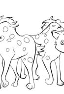 Deux petites hyènes