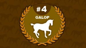 galop 4 - équitation