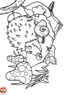 Hérisson et escargot