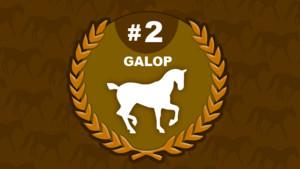 galop 2 - équitation