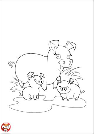 Coloriage: Cochon et bébés