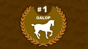 galop 1 - équitation
