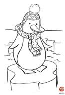 Le pingouin en écharpe