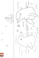 Dauphins amoureux