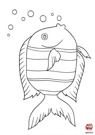 Coloriage : sur ce coloriage à imprimer, ce poisson fait beaucoup de bulles. Du vert ? Du jaune ? Du bleu ? Avec tes crayons de couleurs, tu vas pouvoir colorier ce poisson avec toutes les couleurs de ton choix. C'est un gros poisson avec des yeux tout ronds, il a l'air de bien s'amuser à faire des bulles dans l'eau. Imprime-le gratuitement, colorie-le et accroche-le dans ta chambre. Dans la rubrique des coloriages à imprimer poisson sur TFou, tu peux trouver toute sorte de poisson différent. Tous les coloriages à imprimer sur TFou sont gratuits, tu vas pouvoir bien t'amuser et créer tout un mur océan dans ta chambre avec ces superbes coloriages poisson.