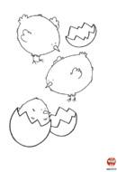 Trois petits poussins