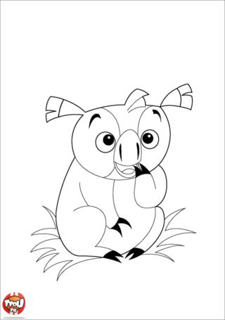 Coloriage: Koala