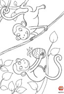 Les singes et l'ananas