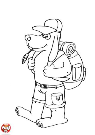Coloriage: imprime vite ce beau dessin de chien montagnard en vacances avec Tou.fr. Utilise ton imagination pour le colorier !