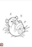 Ours qui aime le miel