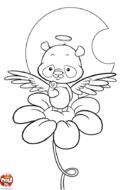 Panda ange