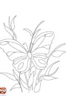Papillon sur une tige