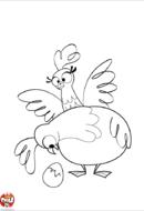 Poules et oeuf