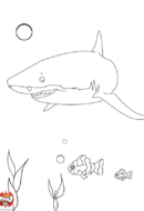 Requin et poissons