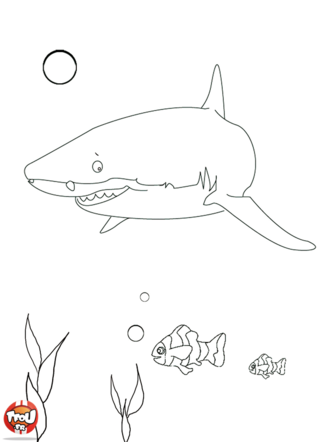 Coloriage: Requin et poissons