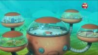 Les octonauts et le requin citron - Octonauts