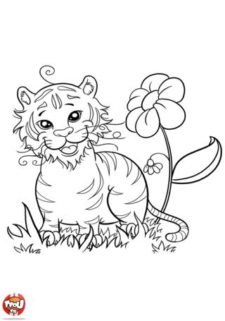 Coloriage: Tigre avec fleur
