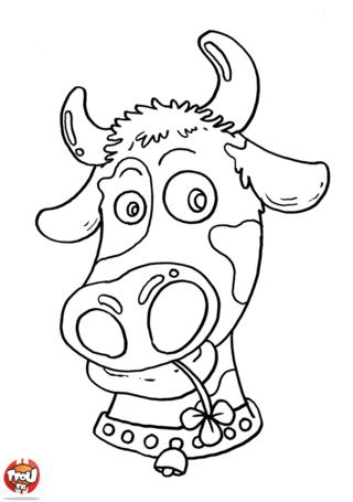 Coloriage: Tête de vache