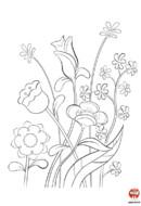 Coloriage-Fleurs-Jolies fleur sauvages