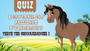 Equitation_Quiz_TFou