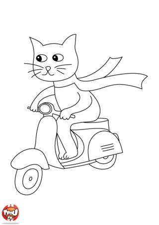 Coloriage: Le chat sur son scooter