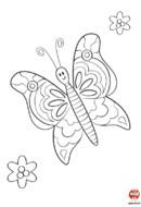 Coloriage- Petit Papillon
