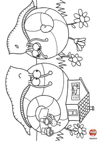 Coloriage : La maison des escargots. Un escargot porte sa maison sur son dos ! Découvre vite les jolies maisons de ces deux escargots et imprime ce coloriage.