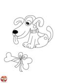 Un gros os pour bébé chien