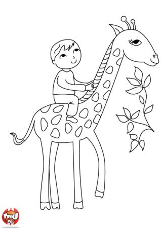 Coloriage: A dos de girafe