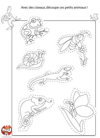Coloriage: Les insectes