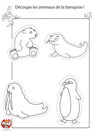 Coloriage: Les animaux de la banquise