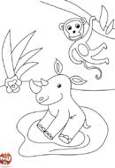 Rhino et le singe