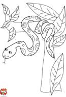Serpent dans l'arbre