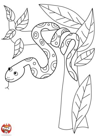 Coloriage: Serpent dans l'arbre