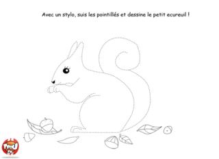 Coloriage: L'écureuil