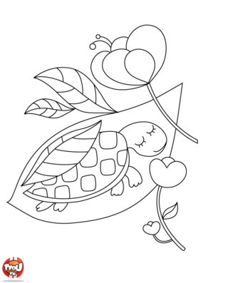 Coloriage: Tortue endormie